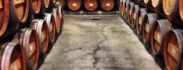 Flora Springs Winery & Vineyard is one of napa.