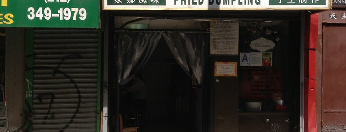 Fried Dumpling is one of NYC Chinatown mini dumpling tour.