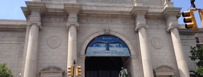 American Museum of Natural History is one of Waldo NYC: Kid-Friendly.
