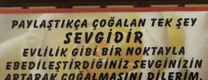Barış Manço Kültür Merkezi is one of Murat karacim : понравившиеся места.