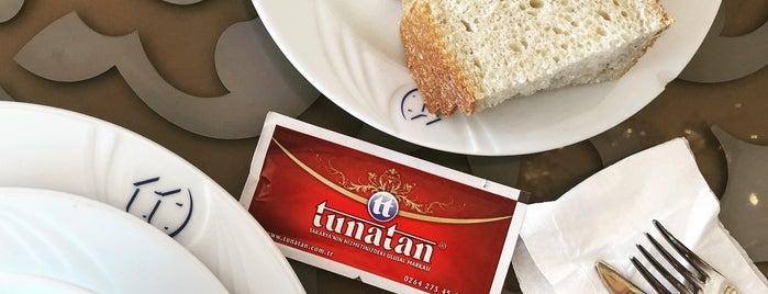 Tunatan Dinlenme Tesisleri is one of Locais curtidos por Murat karacim.