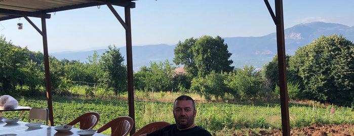 karaçim köy evi is one of สถานที่ที่ Murat karacim ถูกใจ.