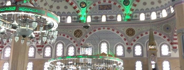 Taşoluk Yeşil Camii is one of Aylinさんのお気に入りスポット.