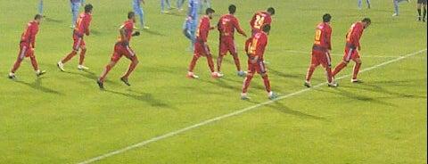 Mersin Tevfik Sırrı Gür Stadı is one of intersport2.