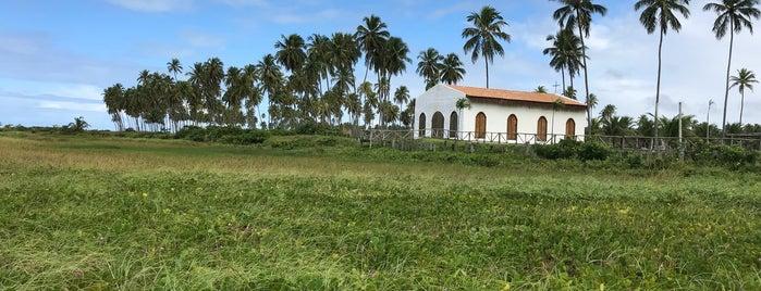 Praia do Marceneiro - Rota Ecológica dos Milagres is one of สถานที่ที่ Lilian ถูกใจ.