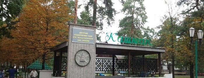 ДОЛ «Каштан» is one of Orte, die Daria gefallen.