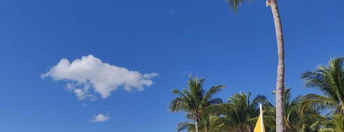 Playa Princess is one of Lugares favoritos de Jose.