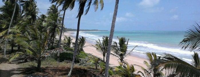 Praia Mirante da Sereia is one of Nordeste de Brasil - 2.
