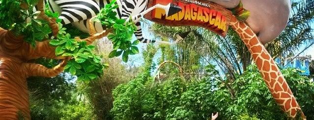 Madagascar Crazy River Adventure! is one of Beto Carrero World.
