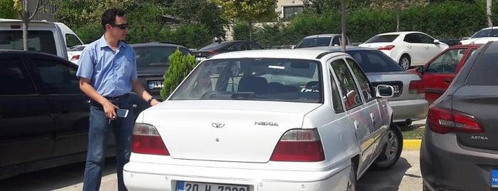 HP Pelzer Pimsa Otomotiv A.S is one of Sibel'in Beğendiği Mekanlar.