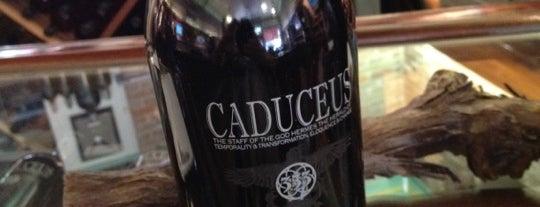 Caduceus wine bar is one of Sedona Hipster HotSpots.