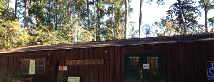 Martin Dies Jr. State Park is one of Locais curtidos por Rita.