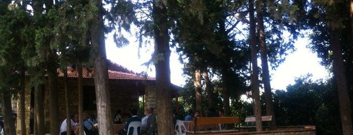 Vakıflı Çay Bahçesi is one of Bir daha görülesi.