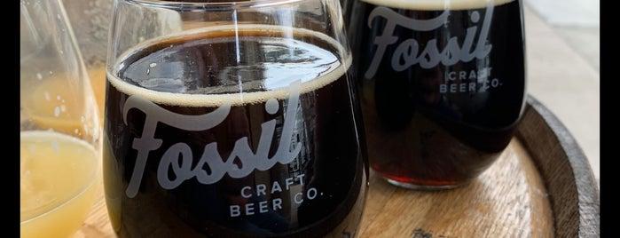 Fossil Craft Beer Company is one of Posti che sono piaciuti a Breck.
