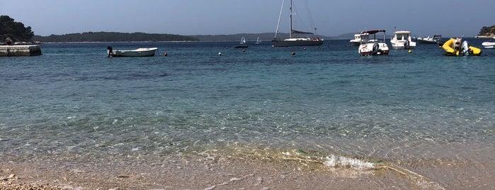 Dalmacija Hotel Beach is one of Locais salvos de Irina.