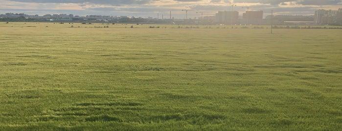 ЖК «Светлановский» is one of Lugares favoritos de Goldi.