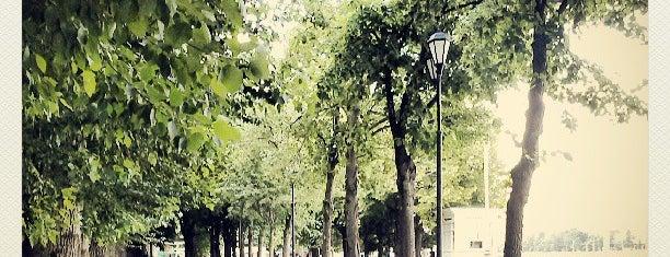 Прокат велосипедов и роликов / Rent a bike is one of Интересные места в Парке Горького.
