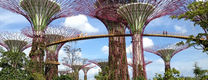 Gardens by the Bay is one of Singapore Contemporary Architecture Tour 2013.
