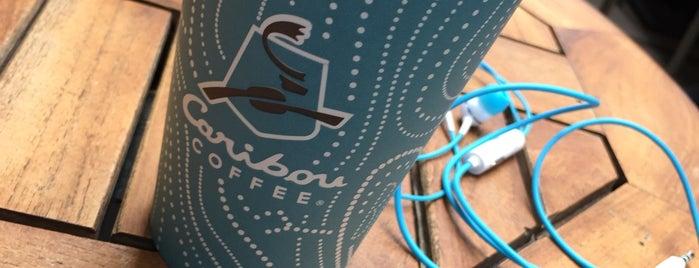 Caribou Coffee is one of Posti che sono piaciuti a Merve.