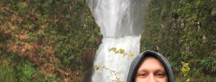 Multnomah Falls is one of Royさんのお気に入りスポット.