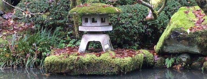 ポートランド日本庭園 is one of Royさんのお気に入りスポット.