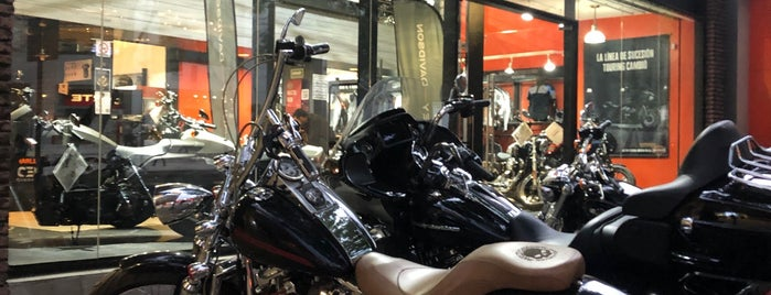 Capital Harley-Davidson is one of Locais curtidos por Lupis.