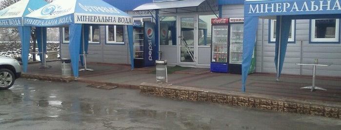 Чайка is one of Бари, ресторани, кафе Рівне.