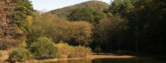 Unicoi State Park is one of Lugares guardados de 💀 blood witch 💀.