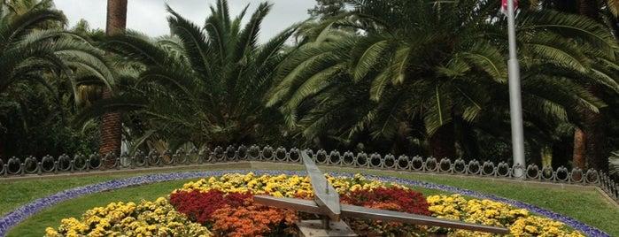 Parque García Sanabria is one of Islas Canarias: Tenerife.