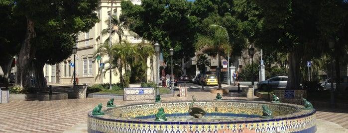 Plaza de Los Patos is one of Islas Canarias: Tenerife.