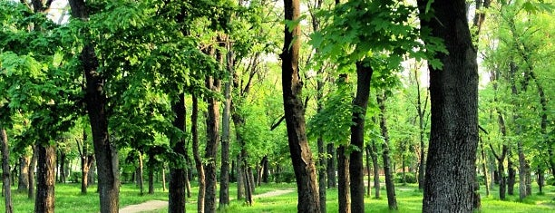 Студенческий парк ДГТУ is one of Ростов планы на проживание ))).