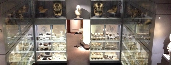 Hunterian Museum is one of London to-do.