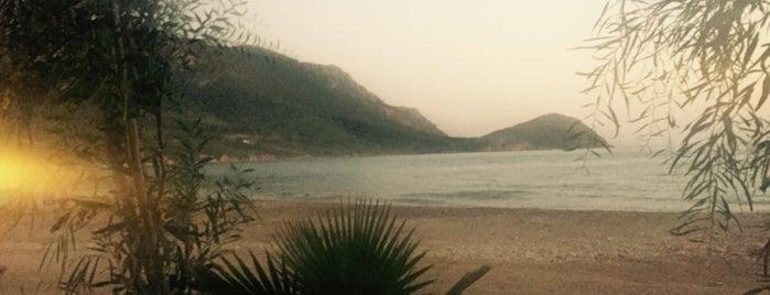 Karaöz Likya Balık Evi is one of Posti che sono piaciuti a Ali.