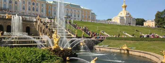Peterhof Museum Reserve is one of П.