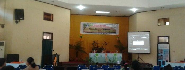 Aula Museum Negeri Papua (Waena) is one of Museum In Indonesia.