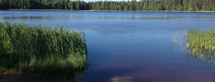 Круглое Озеро is one of Ignaty : понравившиеся места.