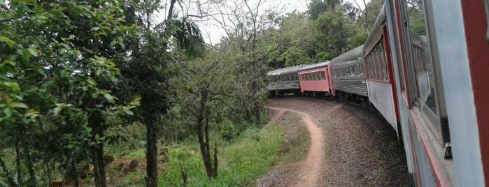 Serra Verde Express / BWT Operadora is one of Curitiba.