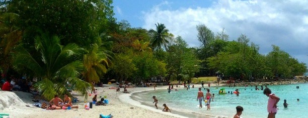 Anse Figuier is one of Martinique & Guadeloupe.