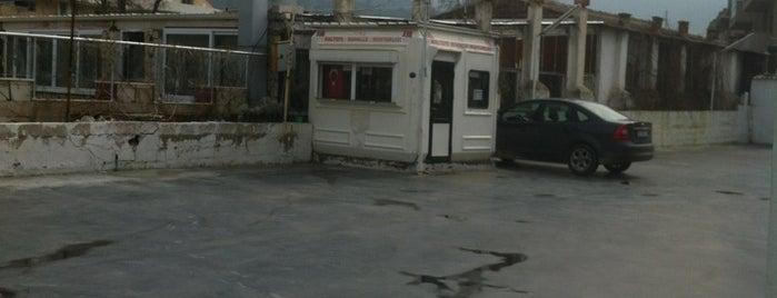 Maltepe Mahallesi Muhtarlığı is one of Best places in BERGAMA İZMİR.