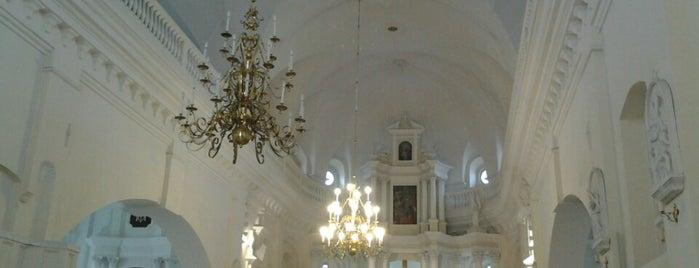Šiaulių Šv. apaštalų Petro ir Pauliaus katedra is one of Lieux qui ont plu à Carl.