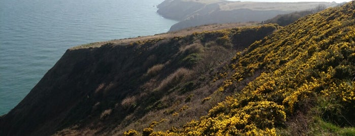 Howth Cliff Walk is one of Dublin.