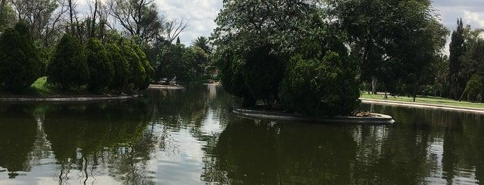 Lago Menor is one of Paola : понравившиеся места.