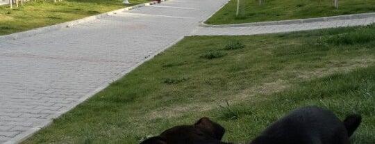 90. Yıl Cumhuriyet Parkı is one of Tempat yang Disimpan 🆉🅴🆈🅽🅴🅻.