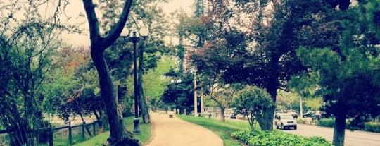 Parque Tobalaba is one of Orte, die Criss gefallen.