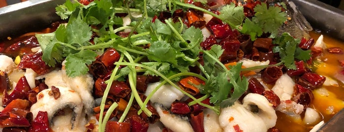 Sichuan Style is one of East Bay To-Do.
