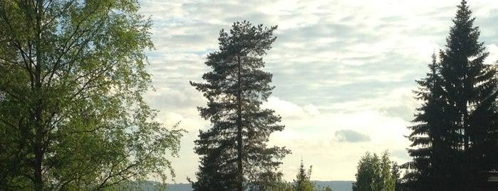 Mesikämmen is one of Jyväskylän kaupunginosat.