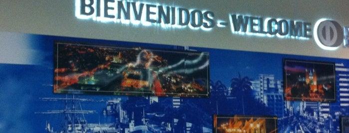Arribo Internacional Aeropuerto is one of Posti che sono piaciuti a Daniel.