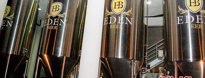 Eden Beer is one of Maringa.