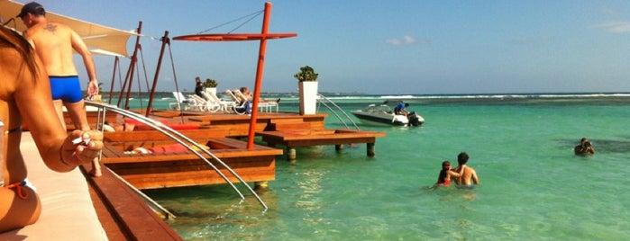 Pelicano Beach Club is one of Lugares favoritos de karla.