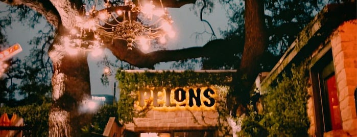 Pelóns is one of Auustin TX.